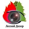 """ДСК, ООО (проект """"Лесной дозор"""")"""